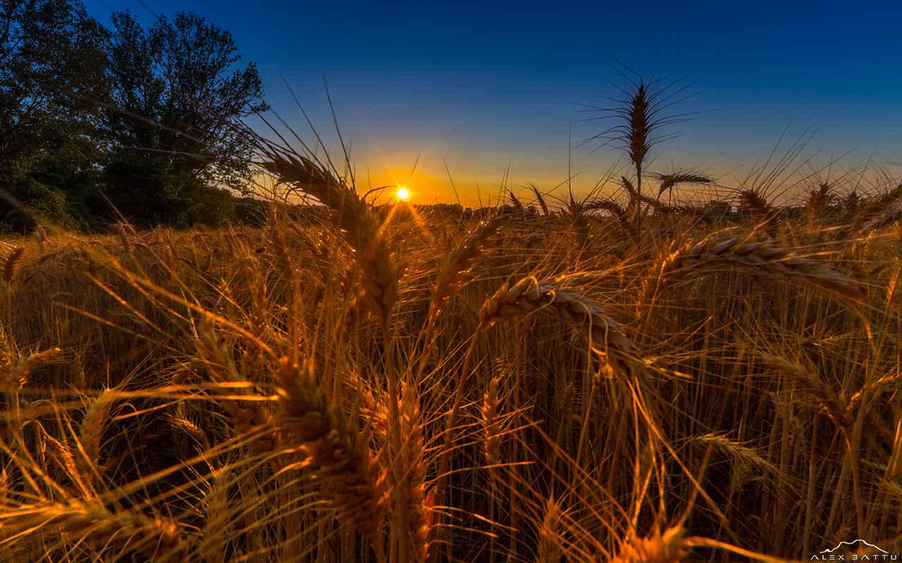 Summer solstice Tortona